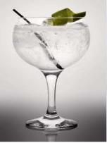 gin_tonic_fusión1